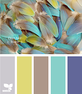 FeatherHues.png
